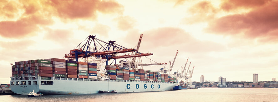Germany, Hamburg, Port of Hamburg, Sea terminal Tellerort, container ship - MS004262