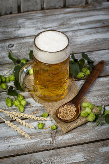 Beer in a beer mug, hop and malt - MAEF009102