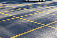 Road with yellow No Parking lines - ZEF000649