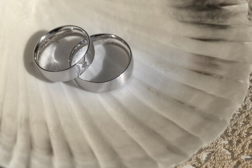 Two wedding rings lying on a shell - MABF000242