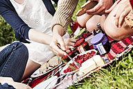 Group of female friends having a picnic - DISF001024