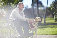 Man in wheelchair with dog in park - ZEF000385