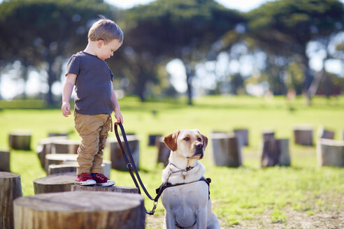 Little boy and his dog - ZEF000871