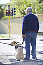 Visually impaired man waiting with his guide dog at pedestrian light - ZEF000999