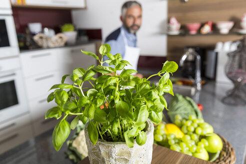 Austria, Pot of basil in kitchen, man in background - MBEF001249