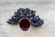 Red wine and grapes - JTF000571