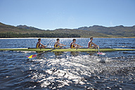 Coxless four rowing boat in water - ZEF000935