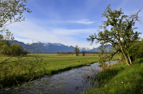 Germany, Upper Bavaria, Murnauer Moos and Ester mountains - LHF000409