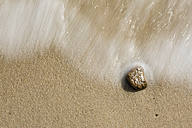 Pebble and wave on sandy beach - SRF000788