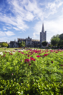 Ireland, County Dublin, Dublin, Wood Quay, St Patrick's Cathedral and St Patricks Park - THAF000728