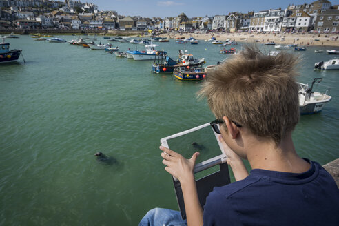 UK, Cornwall, boy photographing a seal at St Ives with his digital tablet - PAF000955