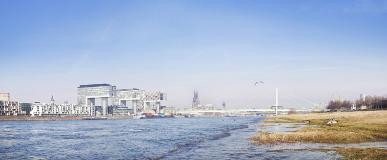 Germany, North Rhine-Westphalia, Cologne, River Rhine and Crane Houses, Cologne Cathedral in the background - MAD000012