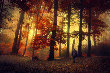 Man walking through autumn forest - DWI000219
