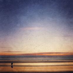 France, Contis-Plage, beach walk at sunset - DWI000234