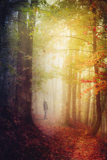 Germany, autumn forest, man standing on forest track - DWI000237