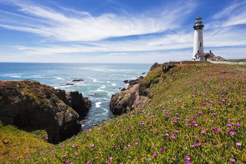 USA, California, Big Sur, Pacific Coast, National Scenic Byway, View to Pigeon Point Lighthouse - FOF007246