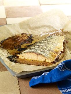 Wild salmon on baking tray - SRSF000530