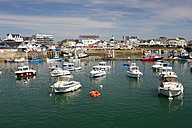 France, Brittany, Port Maria, fishing harbour - DSGF000273