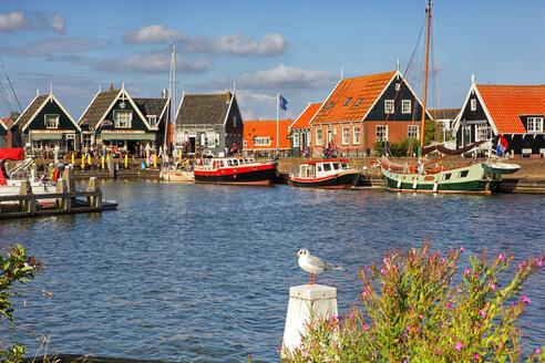 Netherlands, Marken, Ijsselmeer, harbor - DSGF000799