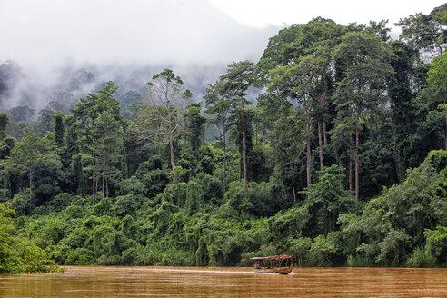 Malaysia, Pahang, Taman Negara National Park, jungle at Sungai Tembeling - DSGF000294