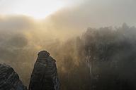 Germany, Saxony, Saxon Switzerland, National Park, Bastei rock formation in the fog - MJF001350