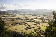 France, Department Savoy, Jongieux, Rhone Valley in late summer - SBDF001313