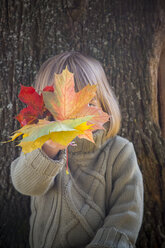 Little girl hiding her face behind bunch of autumn leaves - LVF002012