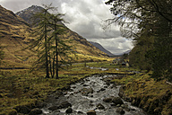 UK, Scotland, Highlands, Glen Coe, torrent - DLF000003