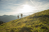 Austria, Tyrol, Tannheimer Tal, young couple hiking on alpine meadow - UUF002230