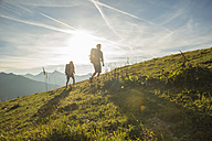 Austria, Tyrol, Tannheimer Tal, young couple hiking on alpine meadow - UUF002231