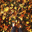 Woman's feet in autumn leaves - LVF002034