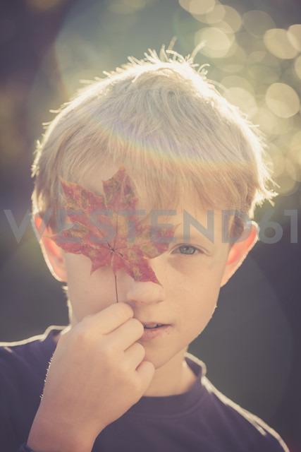 Portrait of boy covering one eye with autumn leaf - SARF000908 - Sandra Roesch/Westend61