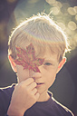Portrait of boy covering one eye with autumn leaf - SARF000908