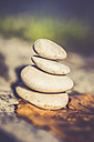 Stack of four pebbles and an autumn leaf at sunlight - SARF000904