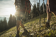 Austria, Tyrol, Tannheimer Tal, young couple hiking in sunlight on alpine meadow - UUF002146