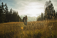 Austria, Tyrol, Tannheimer Tal, young woman standing in sunlight on alpine meadow - UUF002209