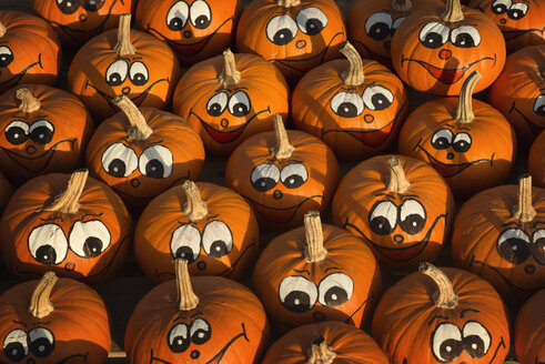 Pumpkins with painted faces - OPF000018