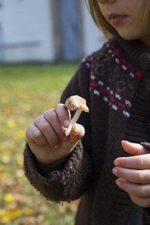Little girl's hand holding mushroom - LVF002058