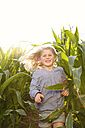 Grinning little girl running through maize field - FKIF000065