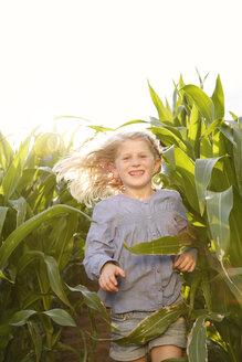 Grinning little girl running through maize field - FKIF000065