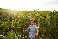 Two children playing in a maize field - FKIF000067