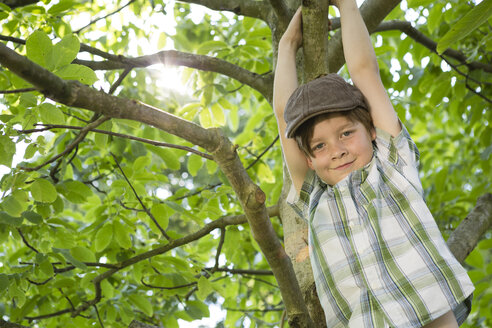 Portrait of little boy climbing in a tree - FKIF000045