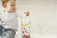 Little girl taking lemon slices out of water carafe - FSF000208