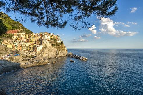 Italy, Liguria, Cinque Terre, Manarola - PUF000106