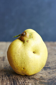 Quince, Cydonia oblonga, standing on wood - HAWF000483