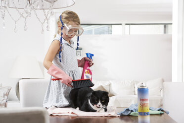 Girl with diving goggles cleaning cat on dining table - FSF000284