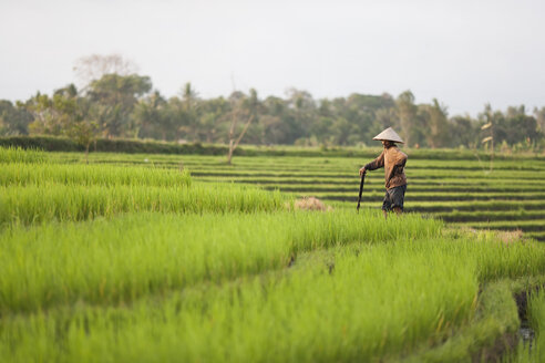 Indonesia, Bali, man working in the field - NNF000058