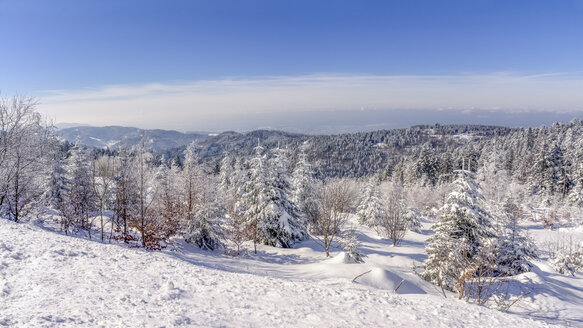 Germany, Baden-Wuerttemberg, Black Forest, snow-covered landscape - PUF000114