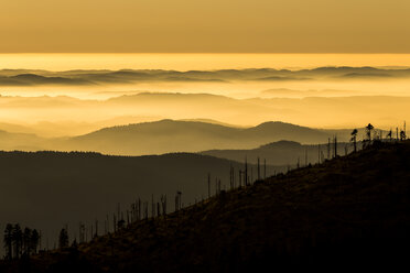 Germany, Bavaria, Bavarian Forest National Park, View from Great Arber with waft of mist at sunset - STSF000557
