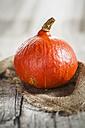 Hokkaido pumpkin on burlap - SBDF001371
